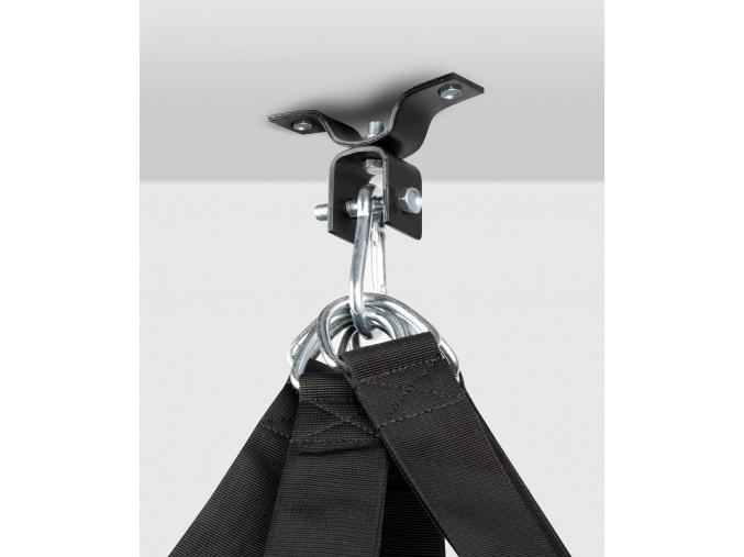 ceiling hook ringhorns 1