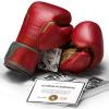 boxing gloves hayabusa marvel iron man boxerske rukavice f7
