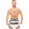8 weapons muay thai shorts carbon snow night6