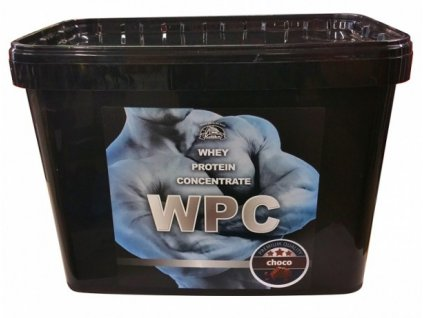 Whey protein WPC 80 4200g