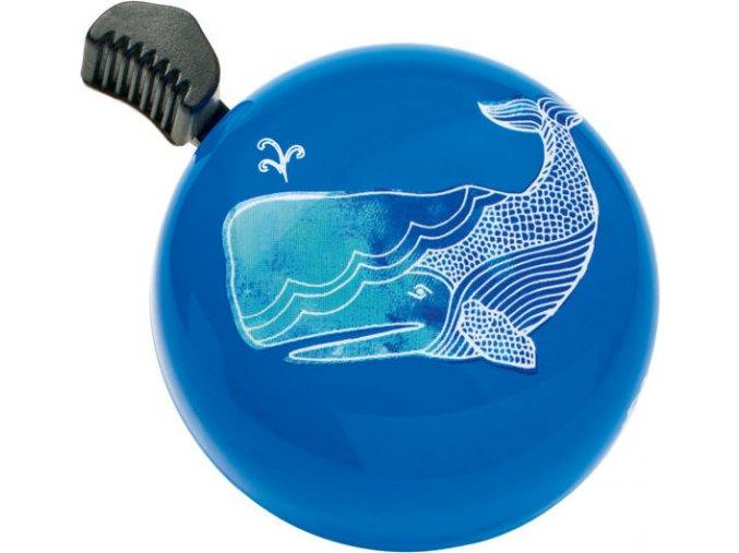 Zvonek / Bell Whale