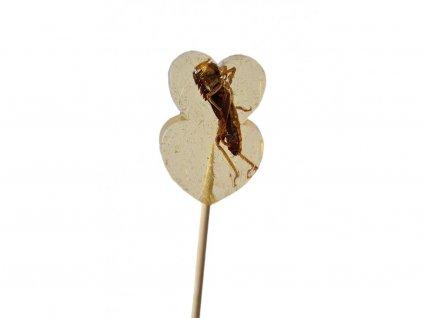 29067 lizatko s kobylkami netradicni darky grig jedly hmyz (1)