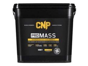 PRO Mass 4,5kg