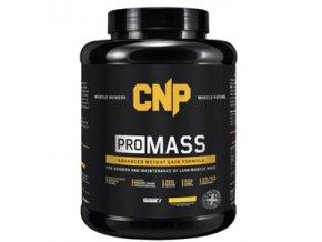 PRO Mass 2,5kg