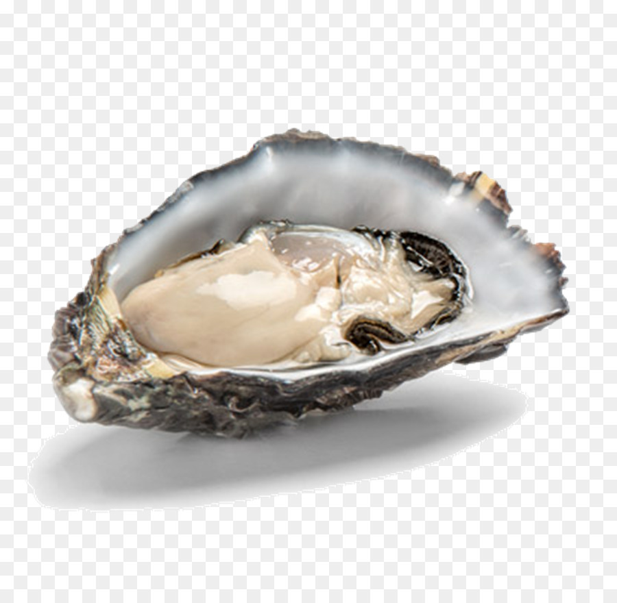 kisspng-pacific-oyster-shellfish-oysters-rockefeller-food-fish-market-la-fine-de-mer-bio-de-normandie-2-5d08c376ea8fd4.3344159015608554149608