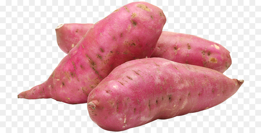kisspng-sweet-potato-organic-food-health-batata-5b0bf926cbe6b3.1697288615275113348352