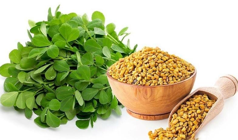 fenugreek-seeds-trigonella-foenum-graecum