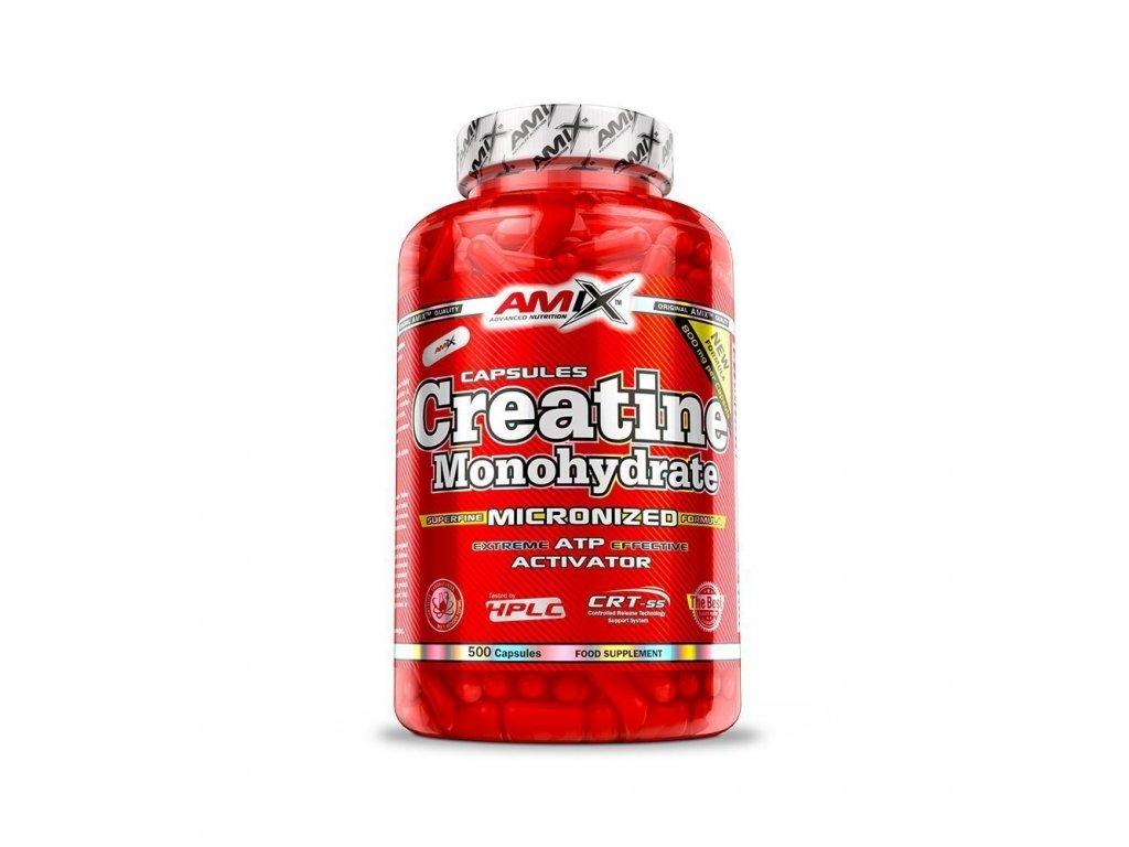creatine monohydrate 500 kapslí amix