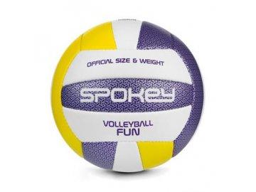volejbalový míč 5