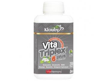 VitaTriplex® 6 plus - 250 tbl., šestinásobná ochrana kloubů, XXL economy