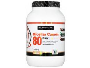 Casein 100 1800 g