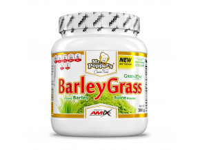 Mr. Popper's® BarleyGrass 300 g