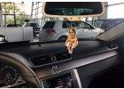 Vůně do auta - Arnold a Kai!