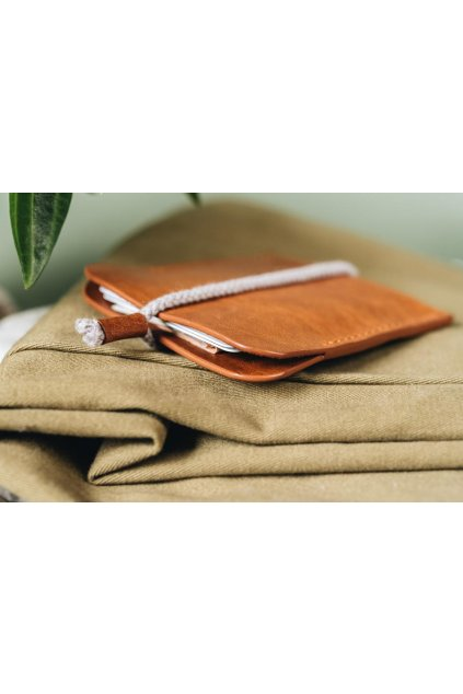 Card case Tan 4 900x