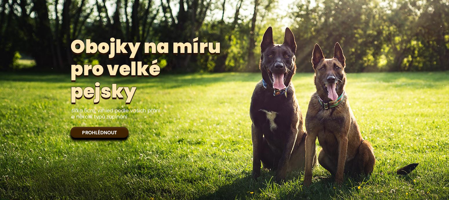 Obojek pro velké psy