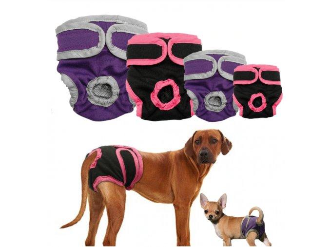 Pro psy- Hárací kalhotky pro psy 2 barvy- Výprodej skladu