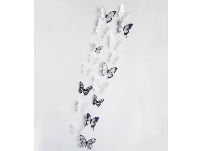 Dekorace na zeď - nálepky motýlů