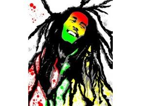 Malování podle čísel na plátno pro dospělé - Bob Marley