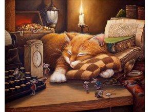 Malování podle čísel na plátno pro dospělé - Spící kočička