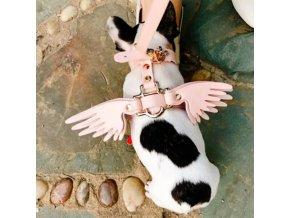 pes - obojky pro psy - módní obojek pro psy s křídly - andělský křídla - chovatelské potřeby