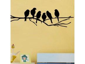 Dekorace - samolepky na zeď - samolepka na zeď ptáčků na sromě - samolepky - tapety na zeď