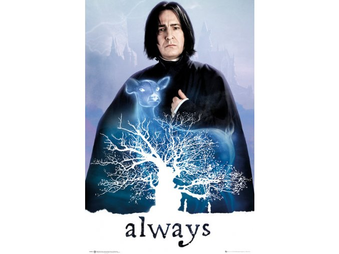 FP4395 HARRY POTTER snape always
