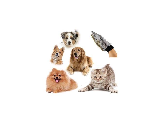Rukavice vyčesávací pro psa - deluxe