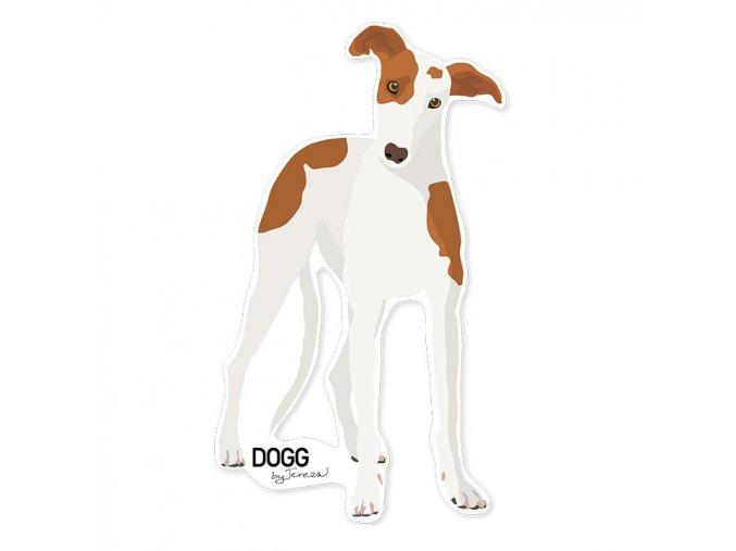 samolepka greyhound chrt telo1