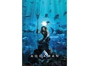 FP4730 AQUAMAN one sheet