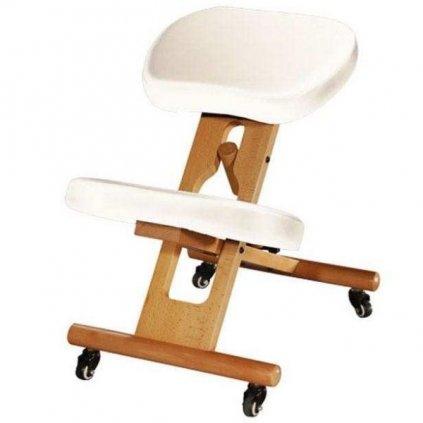 ergonom chair3