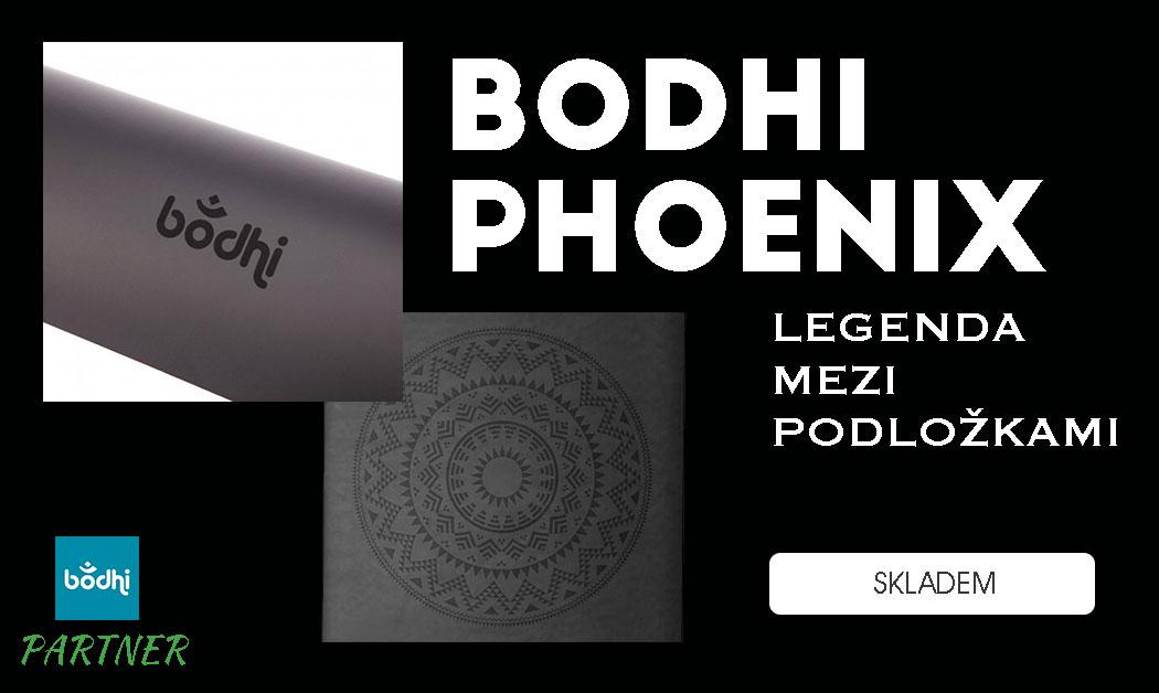 bodhi phoenix