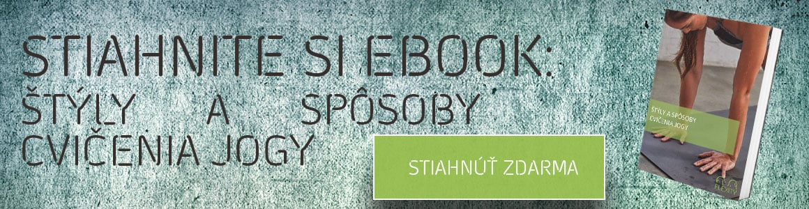 styly jogy ebook