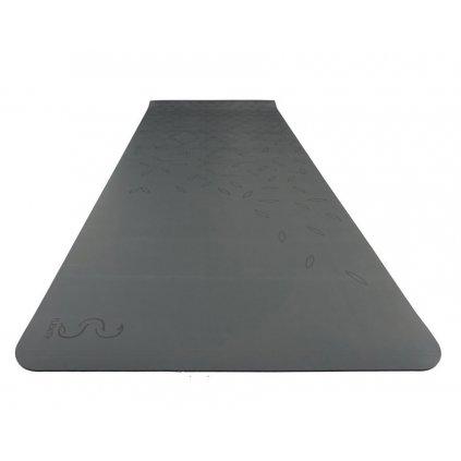 flexity podlozka cista wbg