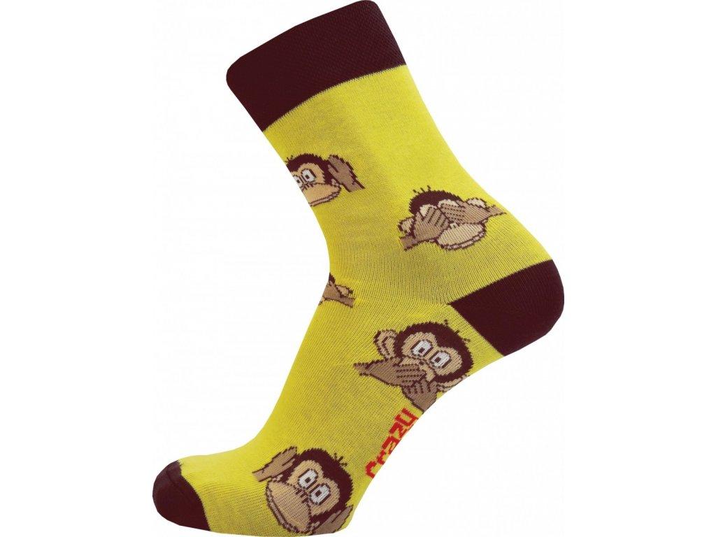monkey zluta