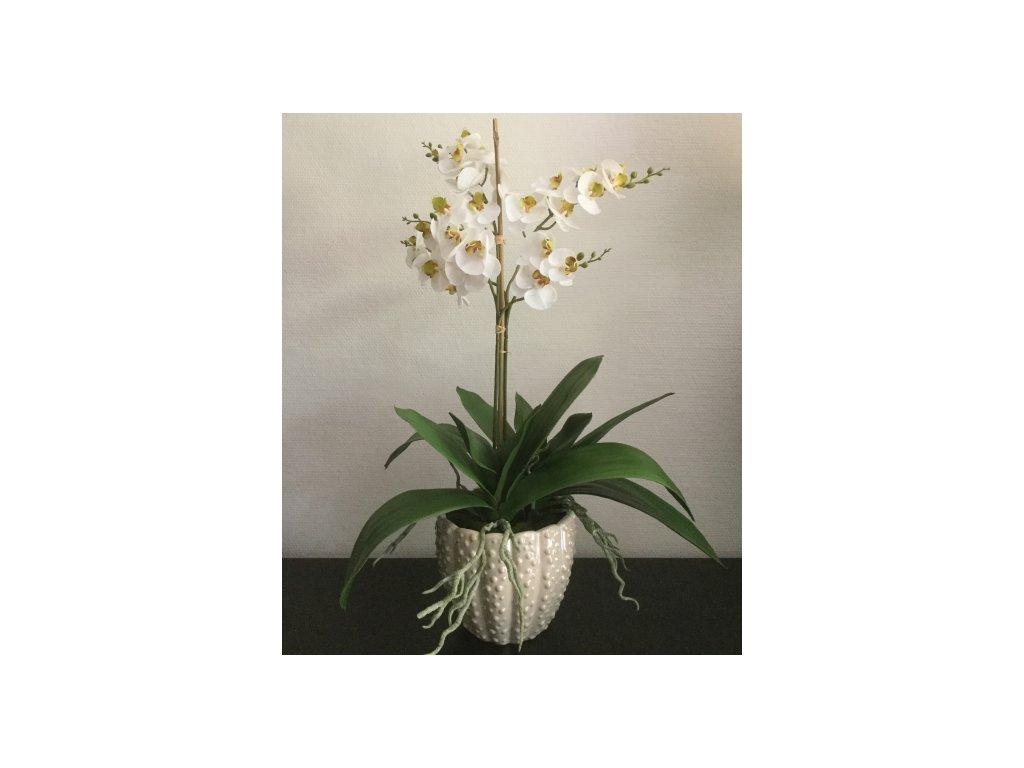 Deco 3281 - Venusta + bílé orchideje