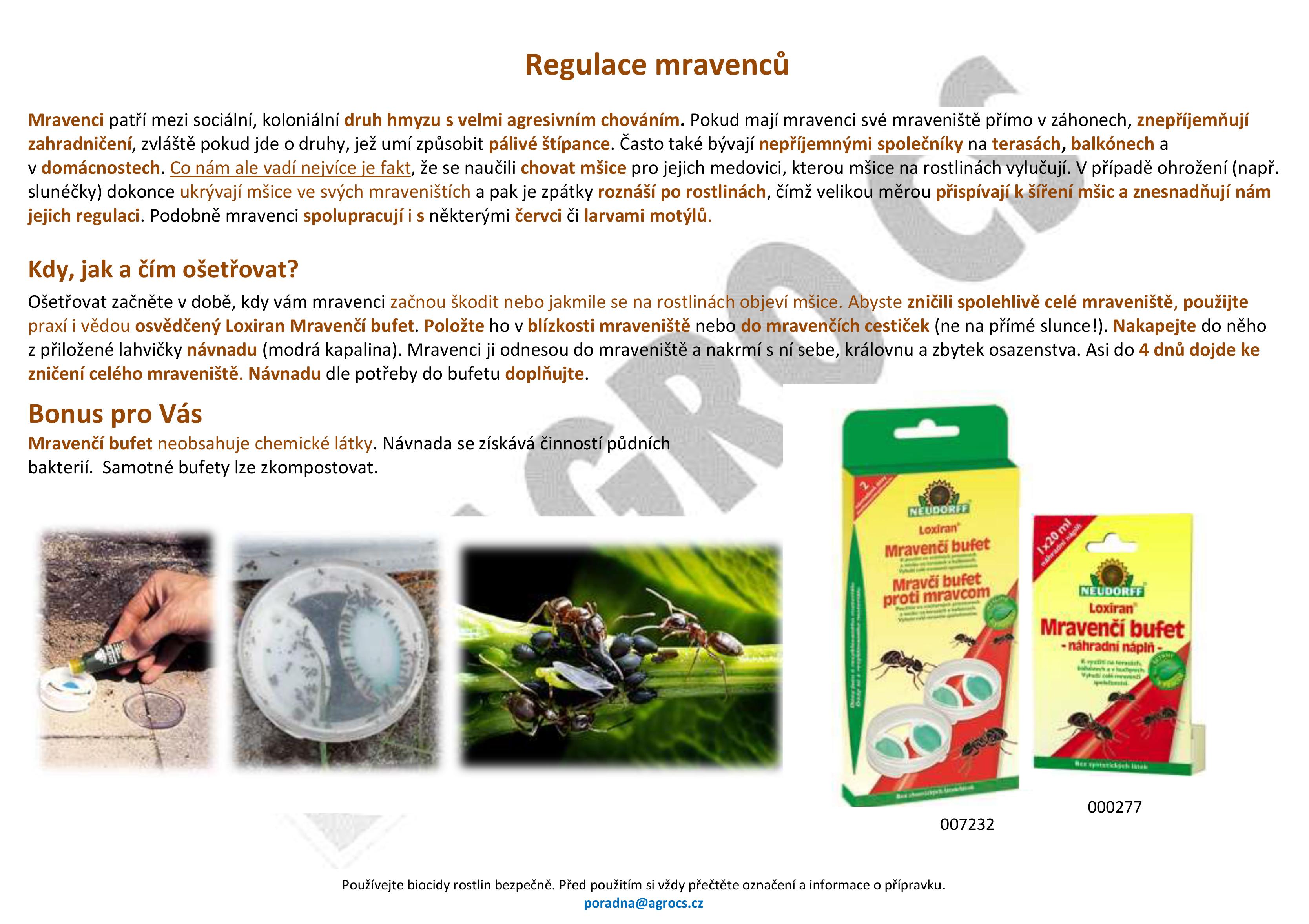 Regulace mravenců v záhonech