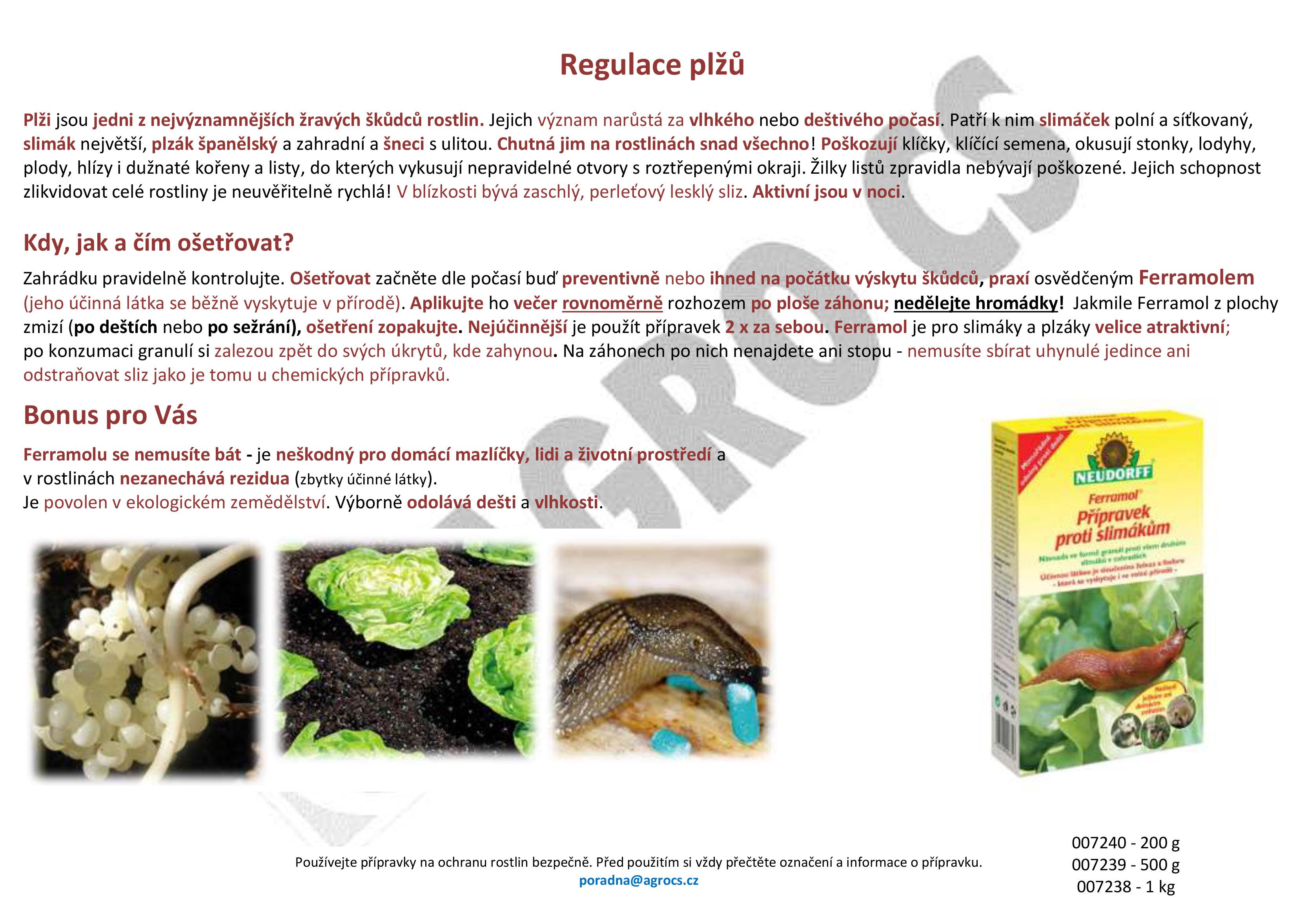 Zbavte se slimáků a jiných plžů účinně a ekologicky