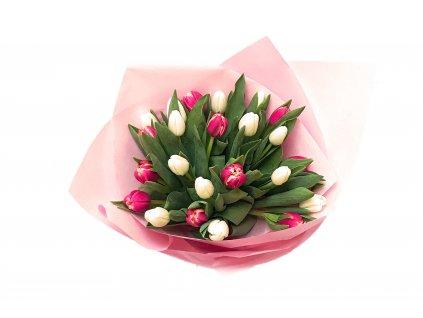 Kytice tulipánů Vesna