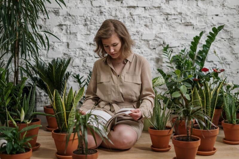 Hľadáte rastliny vhodné na tienisté miesta? Pozrite si naše tipy