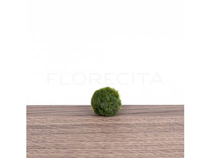 riasogula mini florecita 001