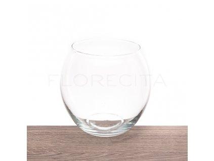 akvarium velke florecita 001