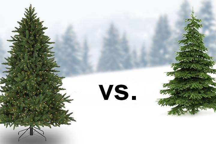 Vánoční stromečky - živý nebo umělý?