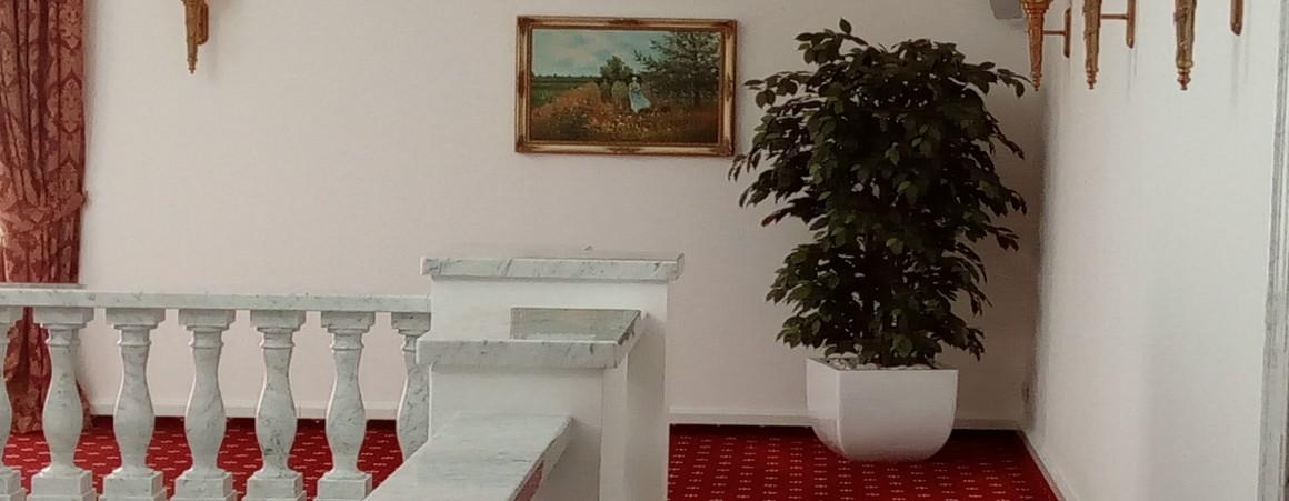 Ficus Boschetto