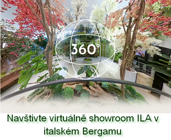 Virtuální showroom