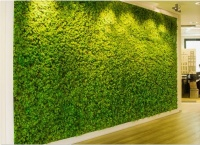 Green-wall-in-preserved-moss_small