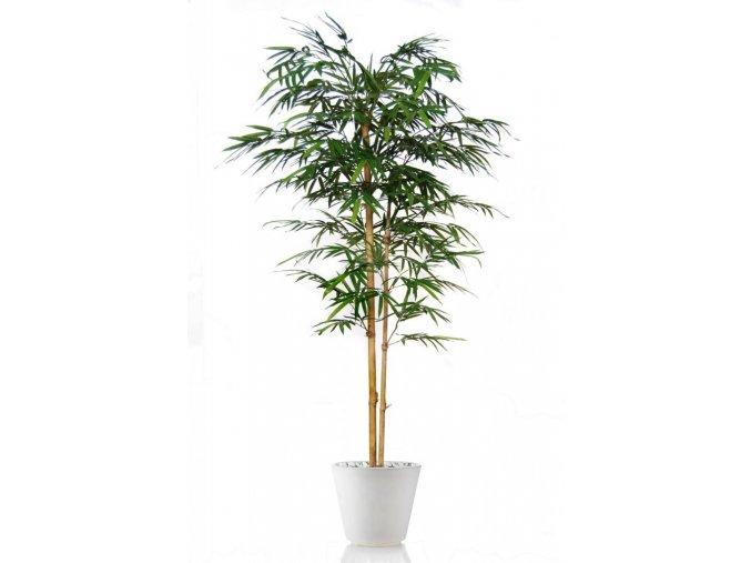 Umělý strom Bambus Japanese Tree (Varianta (180cm) zelený)