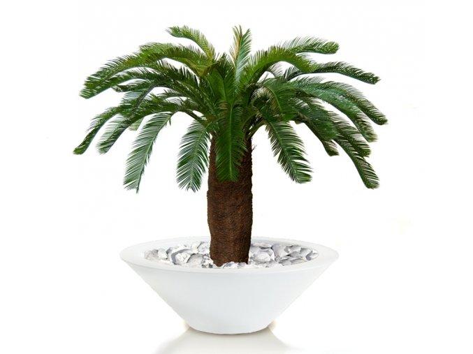Umělá palma Cycas (160cm)
