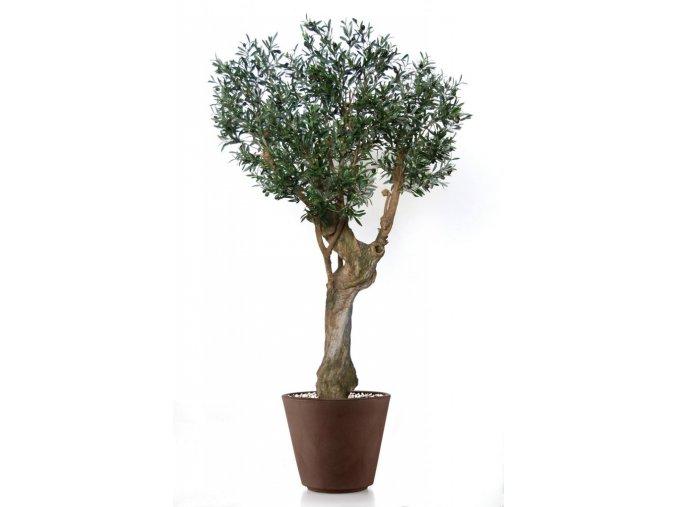 Umělý strom Olive Garda (Varianta 210cm)
