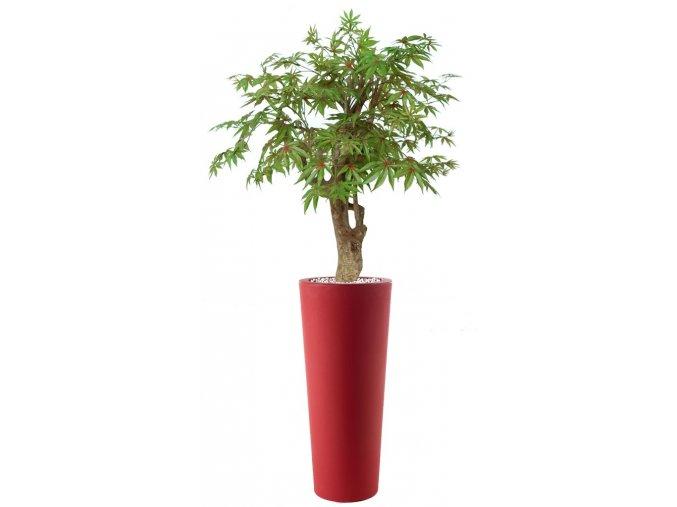 Umělý strom Maple Robustina (90cm) multicolor  javor