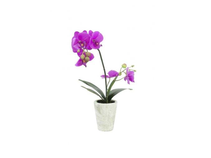 Umělá rostlina Orchid Deco (56cm)